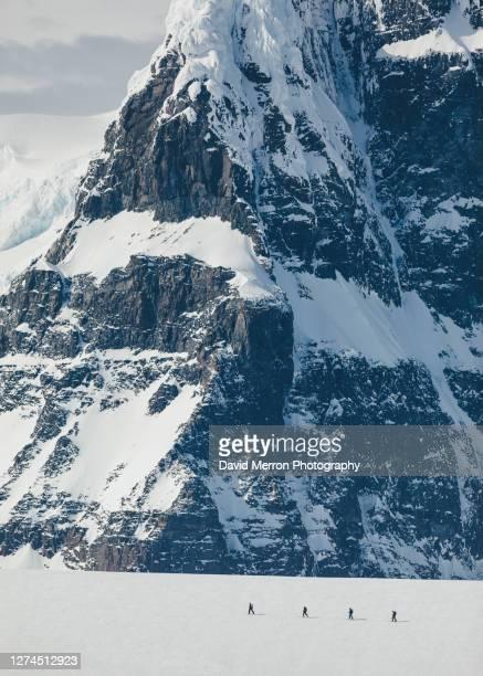 skiers ascent a mountain on the antarctic peninsula - eisheilige stock-fotos und bilder