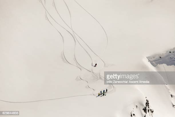 Skiers carve turns through perfect powder to group