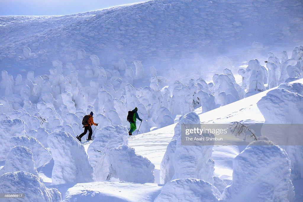 Skiers enjoy the scenery of ice coated trees at the Zao Onsen Ski Resort on January 30, 2014 in Zao, Yamagata, Japan.