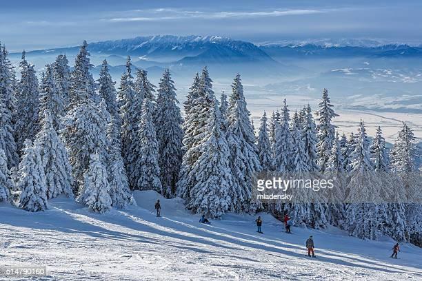 Poiana Brasov, Romania - January 24, 2016: Skiers and snowboarders enjoy a slide down the ski slopes in Postavaru mountain, in Poiana Brasov winter resort.