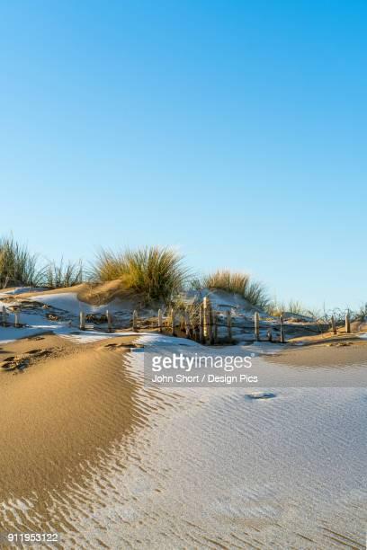 A Skiff Of Snow On The Sandy Beach