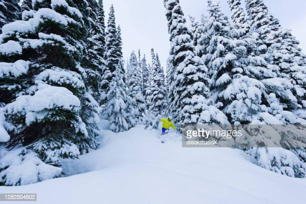 skiing fresh powder on a ski vacation - whistler british columbia stock pictures, royalty-free photos & images