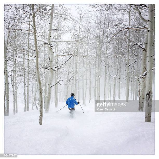 skiing fresh powder through aspen trees - steamboat springs colorado - fotografias e filmes do acervo