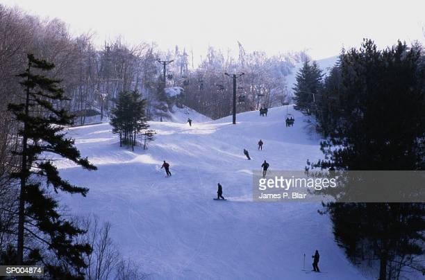 Skiing in Ripton, Vermont
