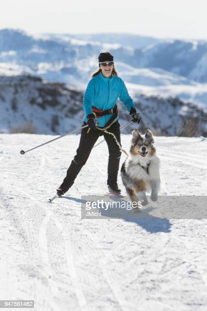 skijoring - nordic skiing event stock pictures, royalty-free photos & images