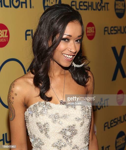 Skin Diamond attends the 2013 XBIZ Awards at the Hyatt Regency Century Plaza on January 11 2013 in Los Angeles California