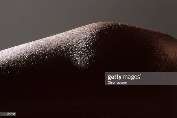 skin with goosebumps - goose bumps stock pictures, royalty-free photos & images