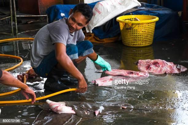 skins of manta rays, sandakan market, malaysian borneo. - caroline pang stock pictures, royalty-free photos & images