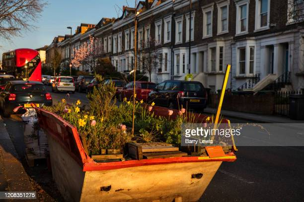 Skip full of plants and garden herbs planted for the duration of the Coronavirus lockdown on 26th March 2020 in Camden London United Kingdom