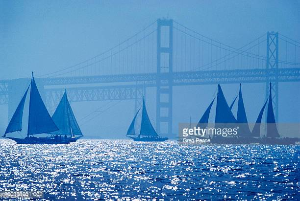 """skipjack oyster dredgers sailing by bridge (digital enhancement) - """"greg pease"""" stock pictures, royalty-free photos & images"""