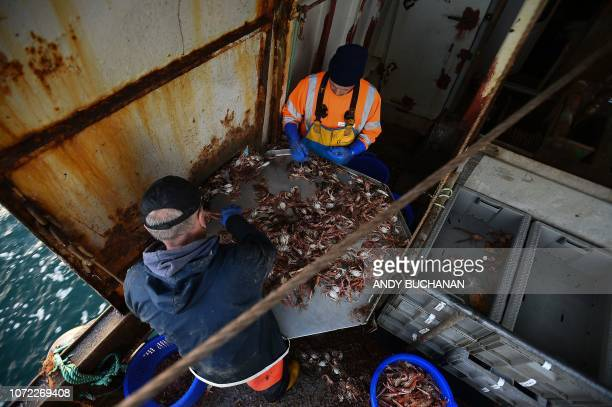 Skipper Andy Brown and crewman Gordon Mowbray work fishing for prawns on the fishing trawler 'Scotia Star' in the North Sea off the east coast of...