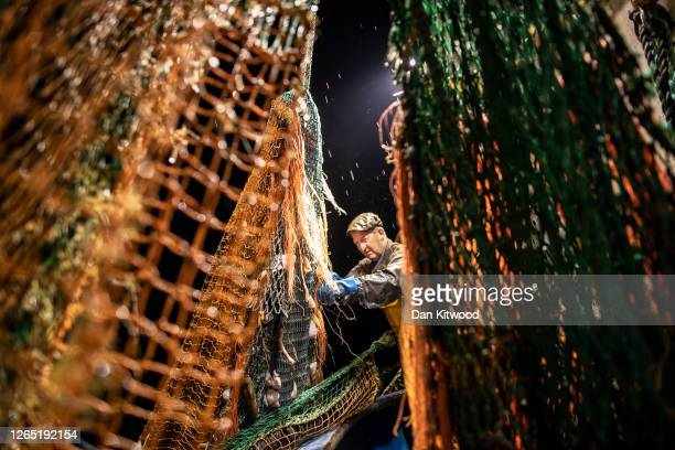 Skipper Stuart Hamilton, pulls in the nets while fishing for flatfish such as Skate and Dover Sole in the English Channel from a Hastings fishing...