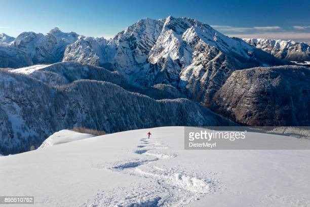 skitouring downhill - powder skiing at watzmann - nationalpark berchtesgaden - european alps stock photos and pictures