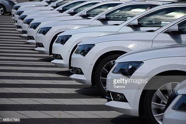 Skoda coches en una fila.