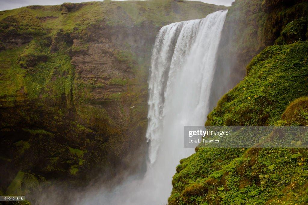 Skogafoss cascade : Foto de stock