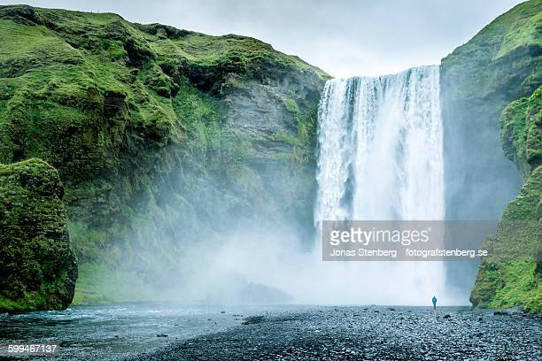 skogafoss - waterfall stock pictures, royalty-free photos & images