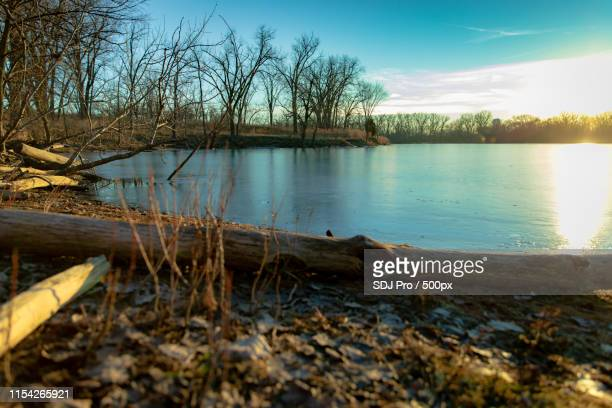 skokie lagoons sunset - レイクフォレスト ストックフォトと画像