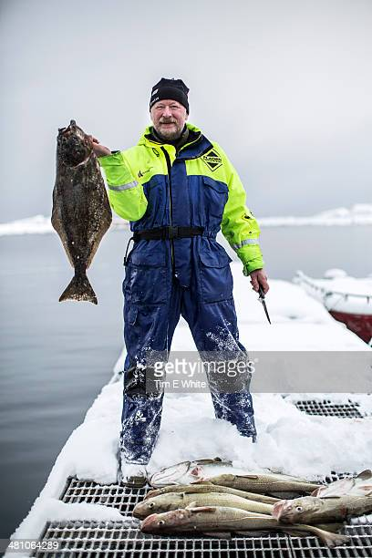 Skrei Fishing in the Arctic, Norway, Europe