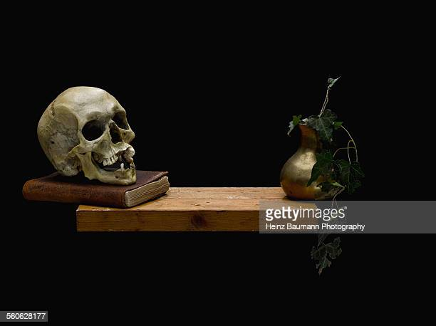 Skull and vase with ivy on black background