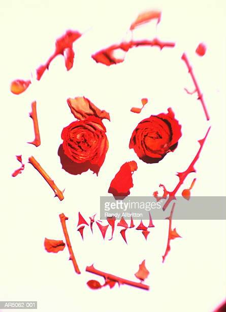Skull illustrated with rose petals and thorns against white background