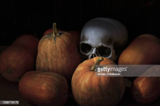 skull in the stack of pumpkins. halloween theme - ugly pumpkins stock photos and pictures