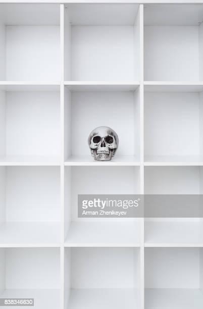 skull in white bookcase - 棚 ストックフォトと画像