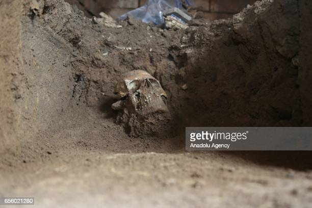 A skull is seen in one of the graves found by Iraqi Kurdish Regional Government's Erbil Archaeology Department during an excavation work in Erbil...