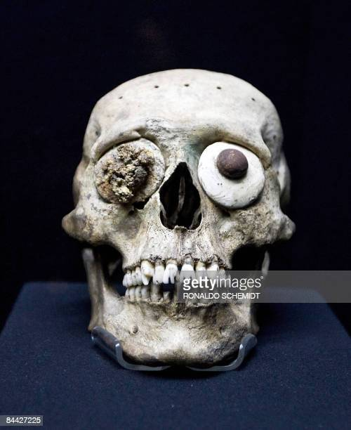A skull mask is seen inside the Templo Mayor Museum in Mexico City on January 23 2009 The Templo Mayor museum is located next to the archaeological...