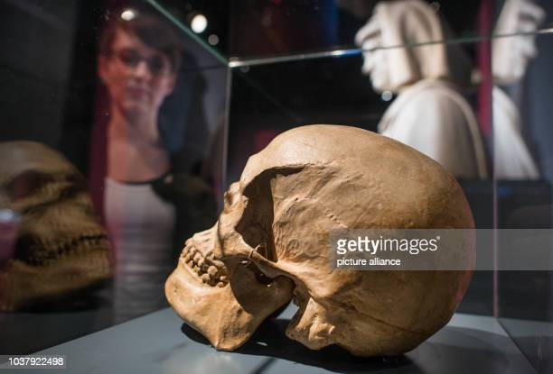 Skull molding of Lorenzo il Magnifico is presented at the exhibition 'The Medici - people, power and passion' at Reiss-Engelhorn-Museum in Mannheim,...