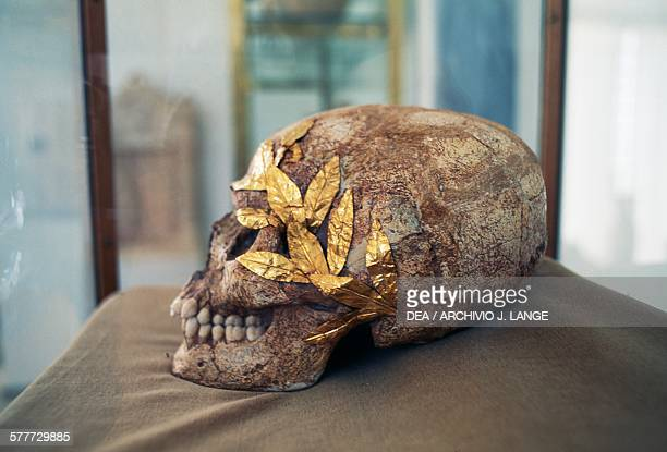Skull of a young athlete with a gold wreath 1st century AD from Lato modern Agios Nikolaos Crete Greece Agios Nikolaos Archaeological Museum