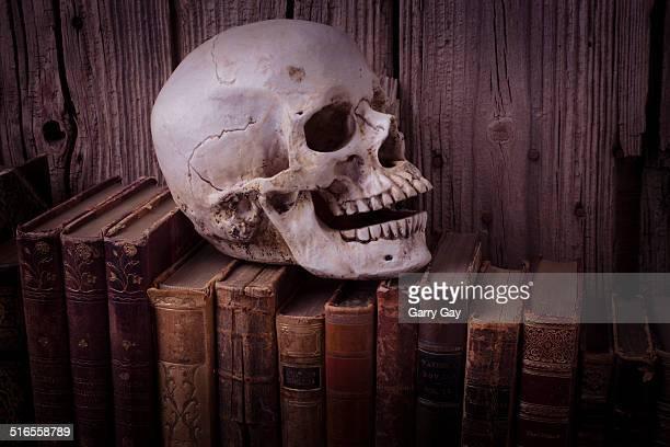 skull on old books - literatur stock-fotos und bilder