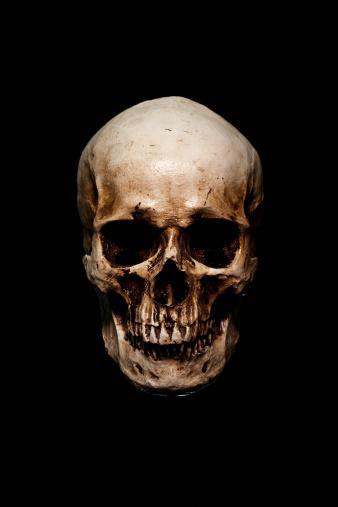 skull 157693714