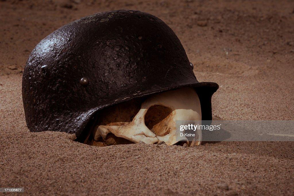 Skull : Stock Photo
