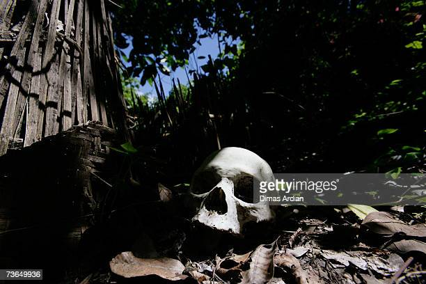 Skull sits beside a new corpse, covered with bamboo, at a village cemetery in Kuban, on March 21, 2007 near Trunyan, Bali resort island, Indonesia....