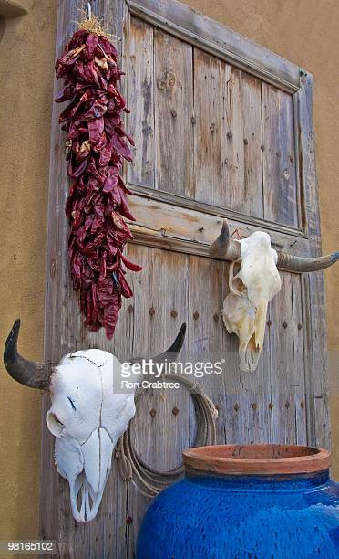 skulls and ristra on door