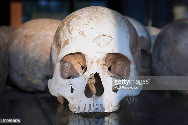 skulls of victims of the khmer rouge preserved at a memorial stupa in choeung ek, cambodia - killing fields stock pictures, royalty-free photos & images