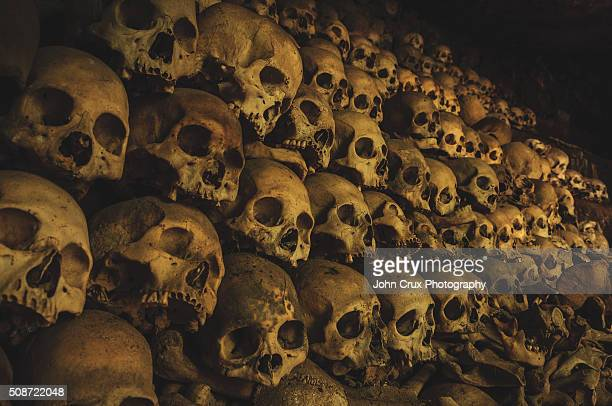 skulls - mass grave stock photos and pictures
