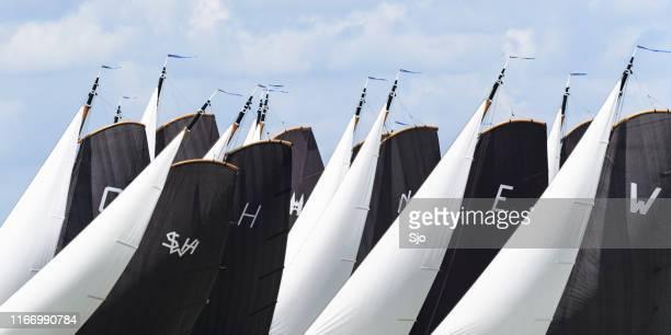 Skutsje classic sailboats sailing on the IJsselmeer near Lemmer in Frisia during the Skutsjesilen
