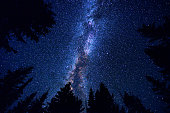 Sky and Mountain Forest at Night with Milky Way Galaxy
