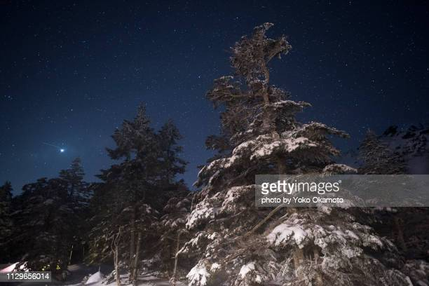 sky full of stars seen at yatsugatake - 一月 stock pictures, royalty-free photos & images