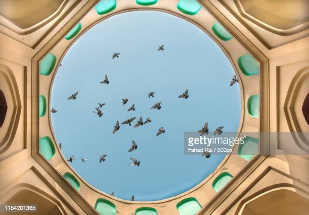 sky is the ceiling - punjabe - fotografias e filmes do acervo