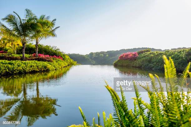 Sky reflected in still tropical lake