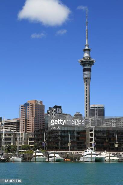 sky tower - auckland stock pictures, royalty-free photos & images
