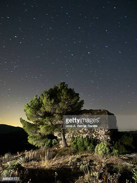 sky with stars and a castle on a mountain - castle mountain stock photos and pictures