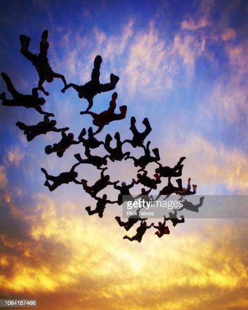 skydiving formation at sunset - coordinazione foto e immagini stock