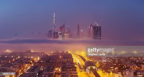 Skyline and Fog Bank