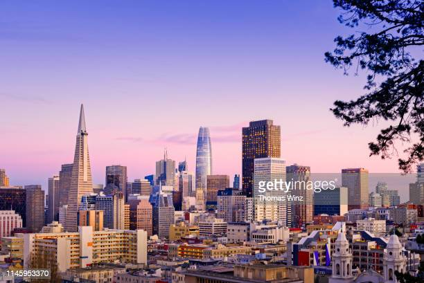 s. f. skyline at dusk - san francisco california stock pictures, royalty-free photos & images