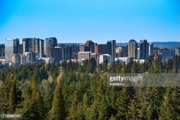 skyline, bellevue washington - bellevue skyline stock pictures, royalty-free photos & images