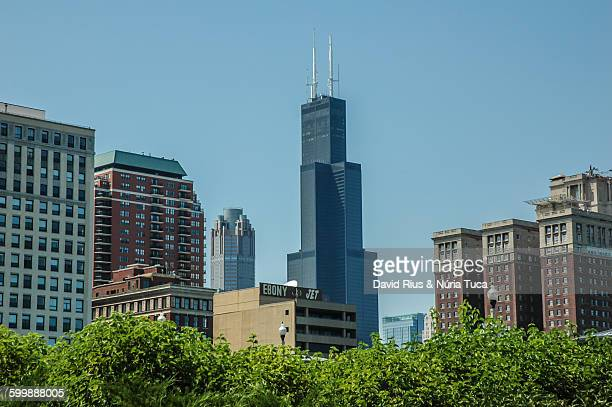 skyline de chicago - sears stock pictures, royalty-free photos & images