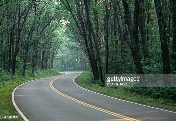 Skyline Drive Scenic Highway Shenandoah National Park Virginia United States of America